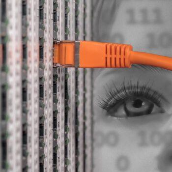 Netzwerk patch Kabel
