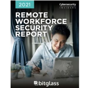 Report: Remote Workforce Security